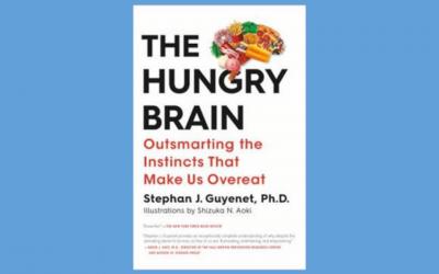 The Hungry Brain – Book Summary